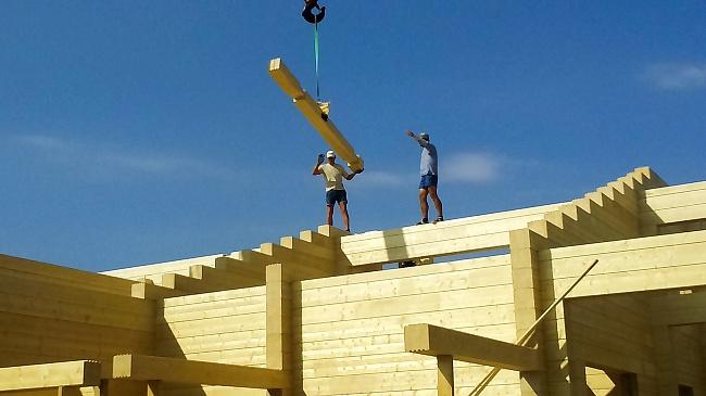 Альтернатива «человейнику»: почему деревянные дома станут доступнее